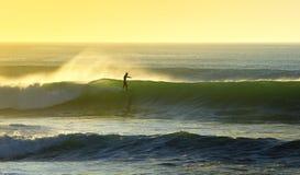 La sensibilità praticante il surfing Fotografia Stock