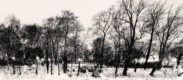 La sepia blanco y negro teñió la foto del invierno de HDR de árboles en el banco de un río con la nieve que cubría la tierra foto de archivo libre de regalías