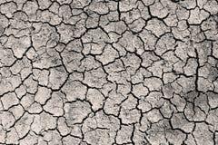 La seppia al suolo incrinata asciutta di gradazione di grigio ha tonificato la foto Immagini Stock