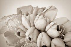 La seppia ha tonificato i tulipani con il nastro Fotografie Stock Libere da Diritti