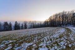 La sera di inverno nel legno in montagne di Tatras Immagini Stock Libere da Diritti