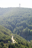 La Serbia, alpi di Dinaric: Strada in Bosnia-Erzegovina Immagine Stock Libera da Diritti