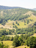 La Serbia: montagne, foreste e campi Immagini Stock