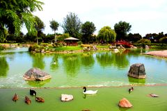 La Serena Chile de jardin du Japon de lac Image stock