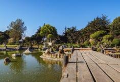 La Serena in Chile. Japanese Garden, La Serena, Coquimbo Region, Chile royalty free stock photo