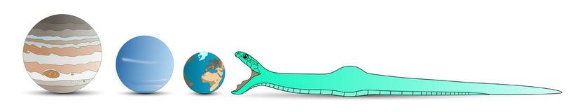 La serpiente come la tierra 2013 Imágenes de archivo libres de regalías