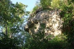 La serpiente Simulacra en el acantilado debajo del montón de la serpiente imagen de archivo libre de regalías
