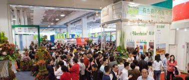 La settima esposizione del fiore della Cina Immagine Stock Libera da Diritti