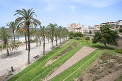 帕尔马, La Seu,西班牙圣玛丽亚大教堂  免版税图库摄影