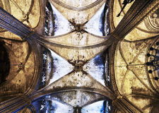 La Seu, Barcelona Cathedral Royalty Free Stock Images