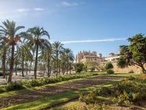 La Seu - catedral de Mallorca fotografia de stock