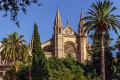 La Seu, catedral de Mallorca - Palma de Mallorca - Espanha Fotografia de Stock