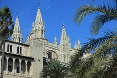 La Seu Cathedral, Mallorca. View between tropical palm trees of the exterior of the landmark building La Seu Cathedral in Mallorca, Balearic Islands, Spain Stock Image