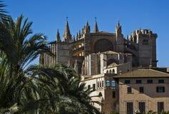 La Seu. The Cathedral La Seu in Palma de Mallorca Royalty Free Stock Photo