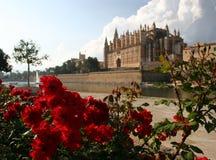 La Seu de la catedral en Palma de Mallorca Imagen de archivo libre de regalías