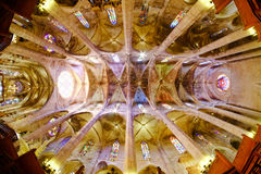 La Seu, the famous catholic medieval cathedral in Palma De Mallo. Rca, interior view with fish-eye lens effect Stock Photos
