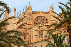 La Seu Kathedrale in Palma de Mallorca Stockbilder