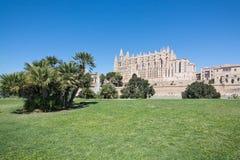 La Seu-Kathedrale und Raum des grünen Grases Stockbilder