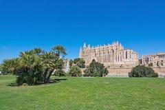 La Seu-Kathedrale und Raum des grünen Grases Stockbild