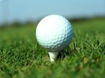 La sfera di golf in erba verde alta ha impostato contro cielo blu Fotografie Stock Libere da Diritti