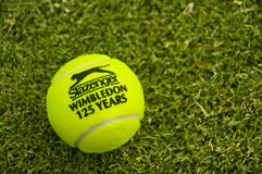 La sfera di tennis ufficiale di Wimbledon Fotografia Stock Libera da Diritti