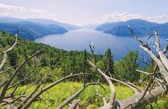 La Siberia, lago Teletskoye Vista della valle della montagna immagine stock libera da diritti