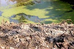 La siccità, il riscaldamento globale, l'isolamento al suolo ed il basso livello dell'acqua nell'irrigazione accumulano immagini stock libere da diritti