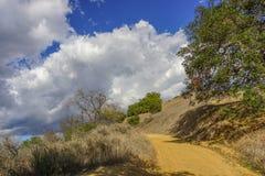La siccità prende il suo tributo sul parco di stato di Topanga Immagine Stock