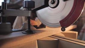 La sierra comienza el trabajo y caídas en una barra de madera y las asierra La madera tratada almacen de metraje de vídeo