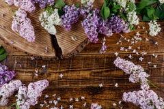 La sierra de madera con una grieta hermosa en ella, rodeado por una dispersión de las flores de la lila de diversas sombras Fotografía de archivo libre de regalías