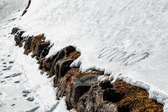 La signification de Xoxoxo étreint et des baisers écrits dans la neige Image libre de droits