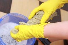 La signora di pulizia comprime il panno. Fotografie Stock
