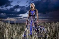 La signora in un vestito da colore Immagine Stock Libera da Diritti