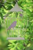 La silhouette décorative de cage avec des oiseaux a coupé du carton parmi les branches images libres de droits