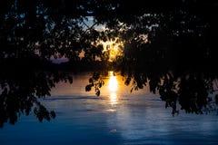 La silhouette de l'arbre sur le dessus avec la rivière et le soleil évasent Images libres de droits