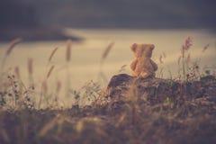 La silhouette de l'ours de nounours seul se reposant, concept de seul photographie stock