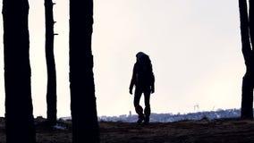 La silhouette de voyageur femelle avec le sac à dos augmentant dans le mouvement lent de forêt banque de vidéos