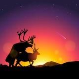 La silhouette des cerfs communs copulent Photographie stock libre de droits