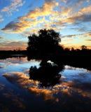 La silhouette du saule dans le lever de soleil à travers la rivière montent Photo stock