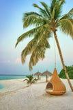 La silla de la ejecución debajo de la palmera en una playa en Maldivas recurre Imagenes de archivo