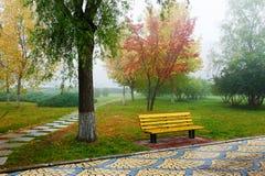 La silla debajo del árbol en niebla Imagenes de archivo