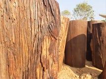 La silla real del tocón de Brown era adorna en el jardín Fotos de archivo