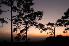 La silueta de la mujer se está colocando en la montaña con la opinión de la puesta del sol Fotos de archivo libres de regalías