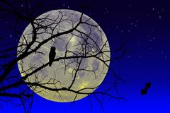 La silueta negra del árbol Foto de archivo libre de regalías