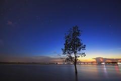 La siluetta dell'albero che pende sopra il lago in Surin Immagine Stock