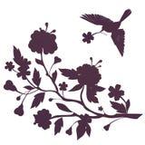 La siluetta dell'uccello ed i fiori sul fiore si ramificano Fotografia Stock