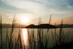 La siluetta delle piante e della montagna con il tramonto di pendenza Fotografie Stock Libere da Diritti