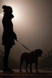 La siluetta di notte di una ragazza con il cane Vista laterale fotografia stock