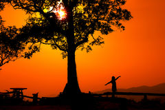 La siluetta di una coppia in un tramonto abbellisce Fotografie Stock Libere da Diritti