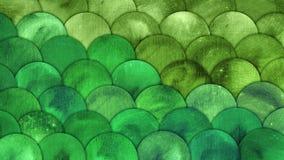La sirena escala el fondo del Grunge del verde del squame de los pescados de la acuarela foto de archivo libre de regalías